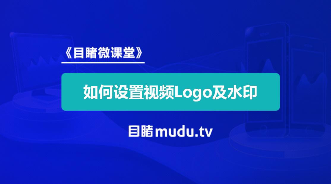 如何设置视频logo及水印.png
